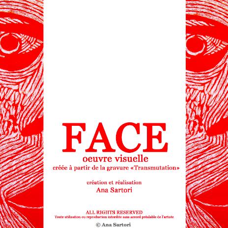 Face oeuvre visuelle